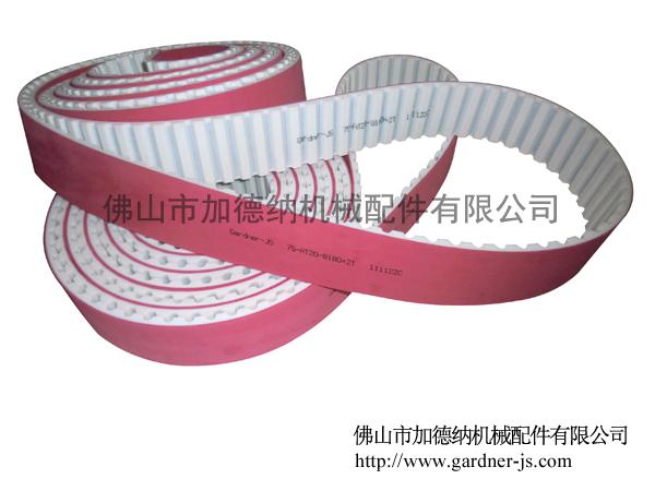 C-动力环形带